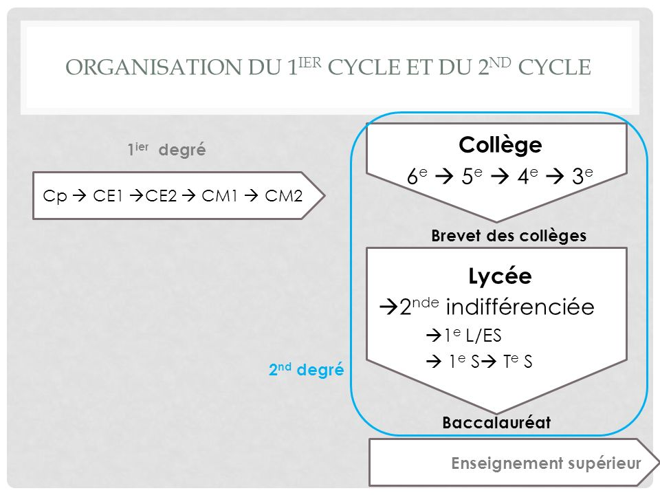 Organisation du 1ier cycle et du 2nd cycle