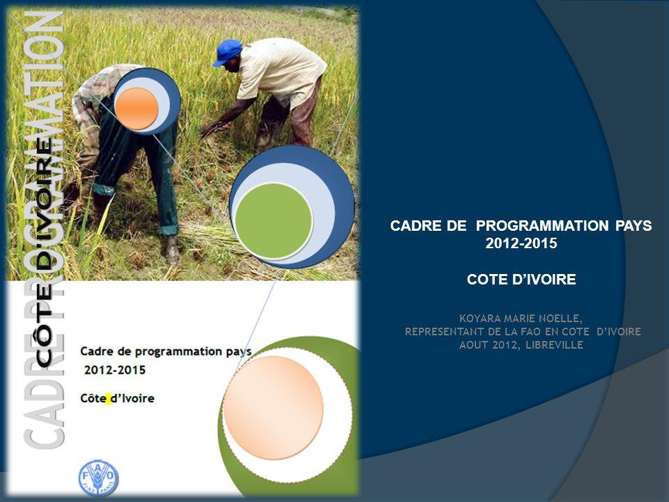 REPRESENTANT DE LA FAO EN COTE D'IVOIRE
