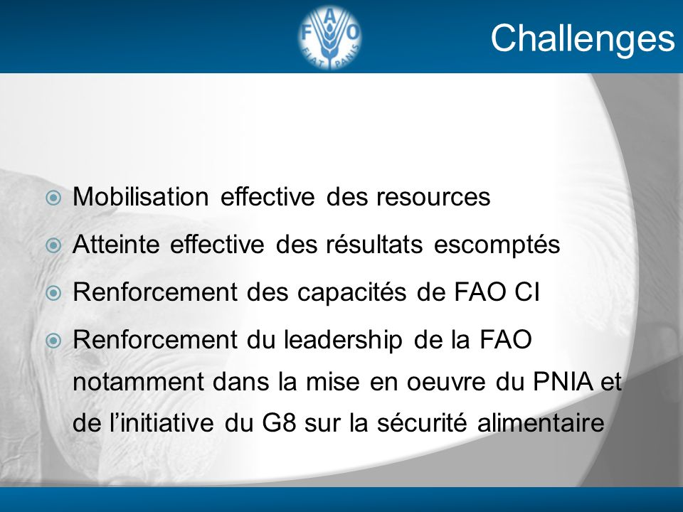 Challenges Mobilisation effective des resources