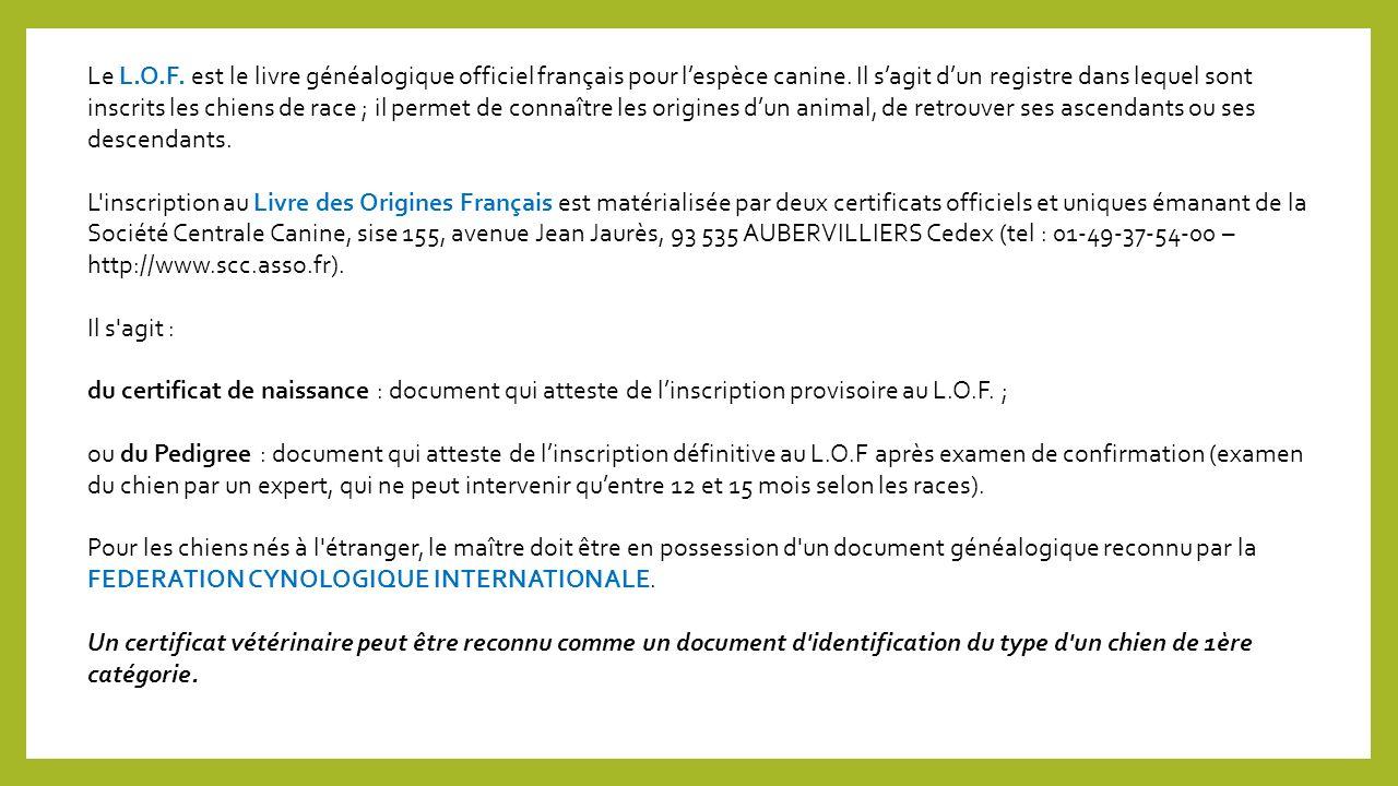 Le L.O.F. est le livre généalogique officiel français pour l'espèce canine. Il s'agit d'un registre dans lequel sont inscrits les chiens de race ; il permet de connaître les origines d'un animal, de retrouver ses ascendants ou ses descendants.