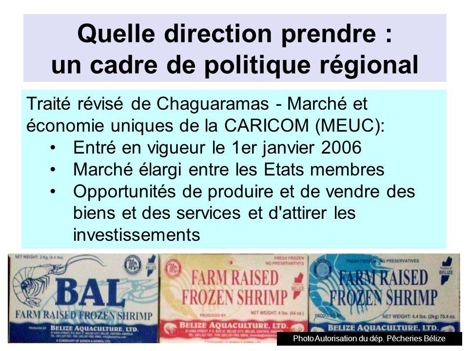 Quelle direction prendre : un cadre de politique régional
