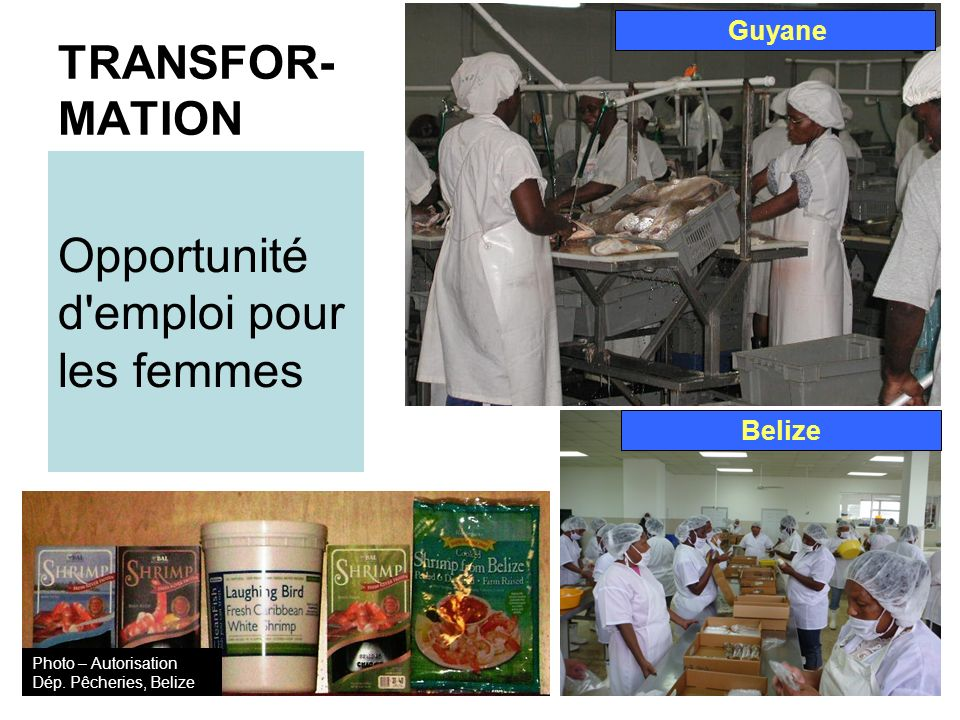 Opportunité d emploi pour les femmes