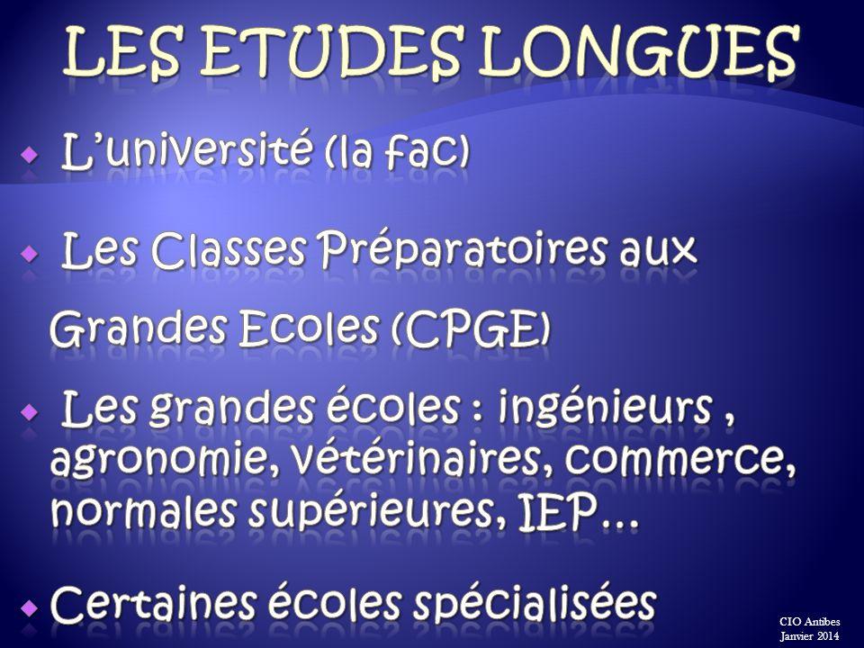 Les ETUDEs longues L'université (la fac)