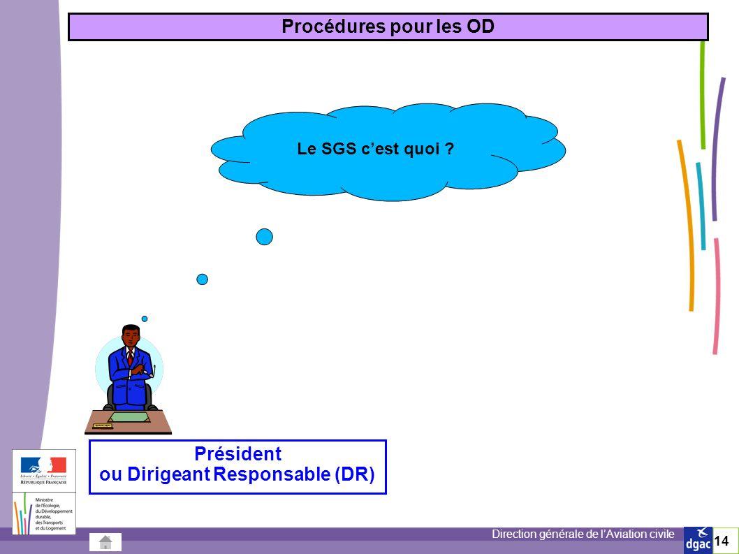 ou Dirigeant Responsable (DR)