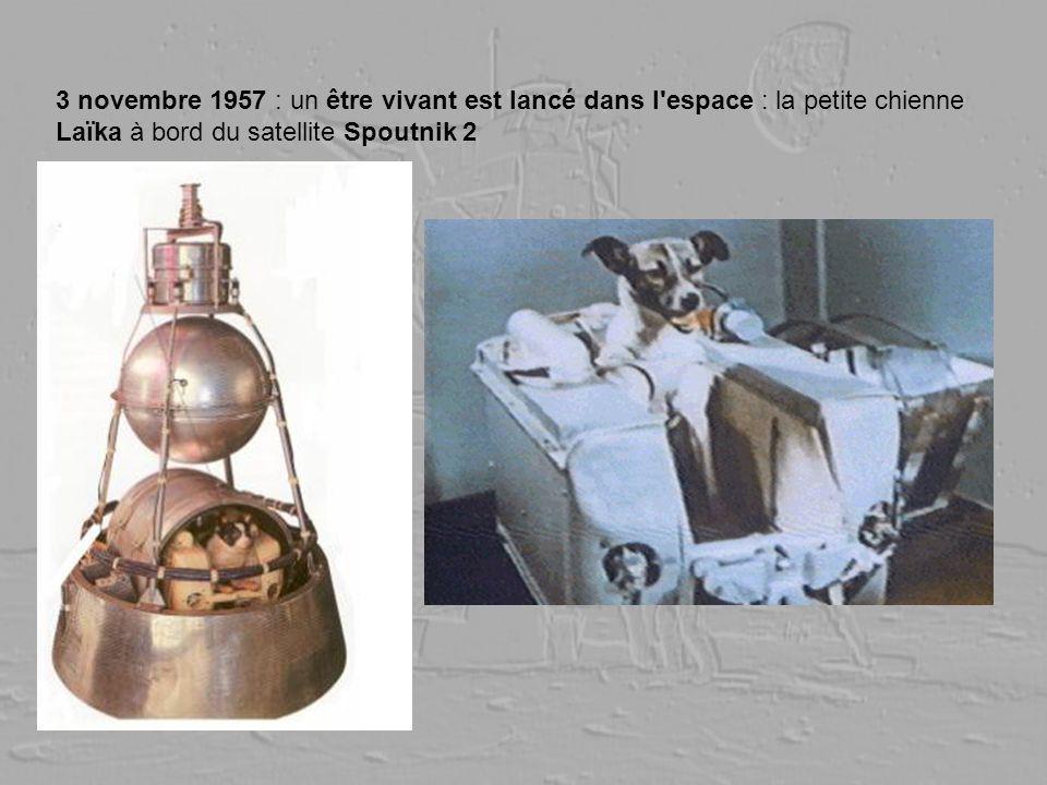 3 novembre 1957 : un être vivant est lancé dans l espace : la petite chienne Laïka à bord du satellite Spoutnik 2