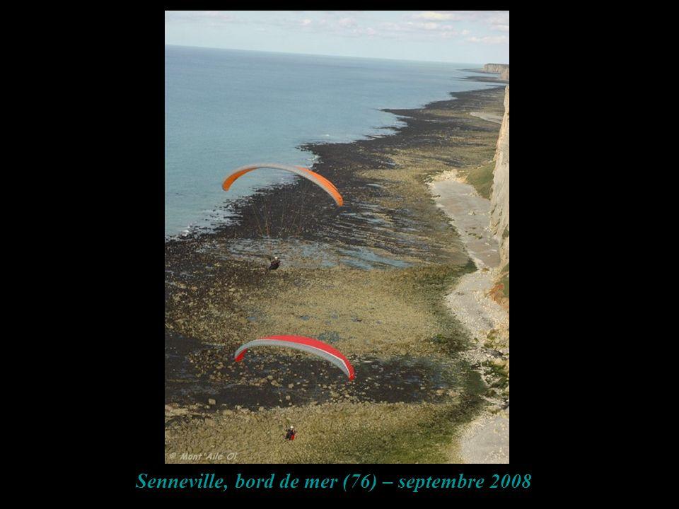 Senneville, bord de mer (76) – septembre 2008