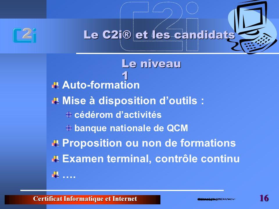 Le C2i® et les candidats Le niveau 1 Auto-formation