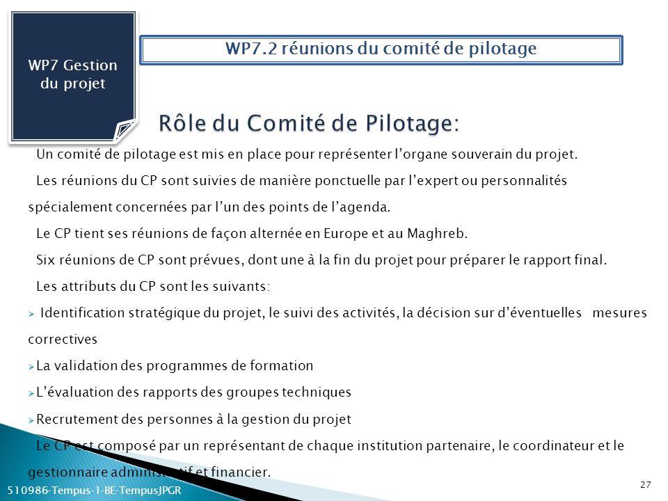 Rôle du Comité de Pilotage: