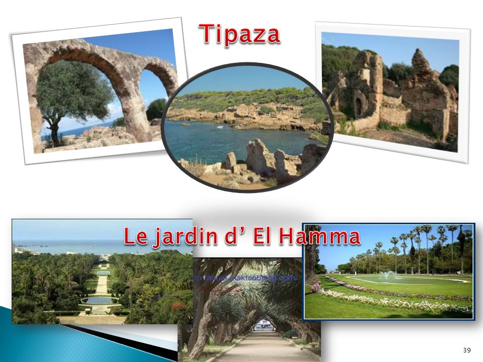 Tipaza Le jardin d' El Hamma