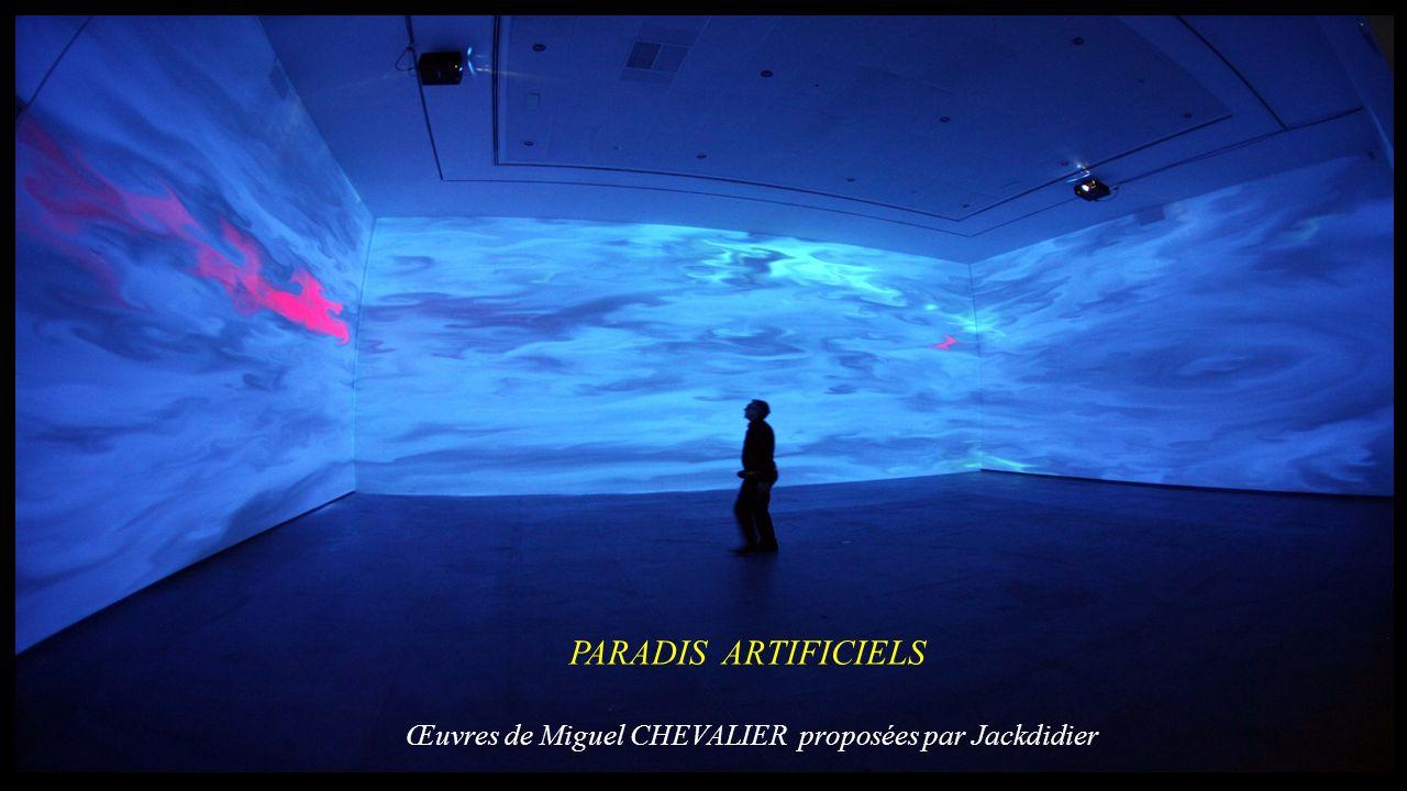 PARADIS ARTIFICIELS Œuvres de Miguel CHEVALIER proposées par Jackdidier