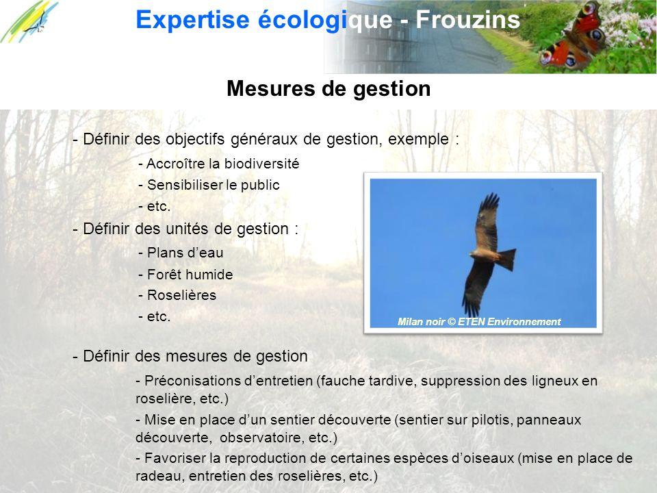 Expertise écologique - Frouzins Milan noir © ETEN Environnement