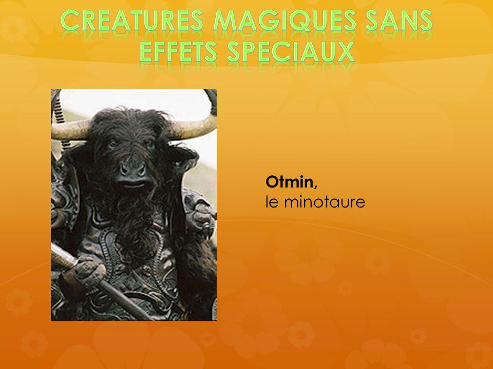 CREATURES MAGIQUES SANS EFFETS SPECIAUX