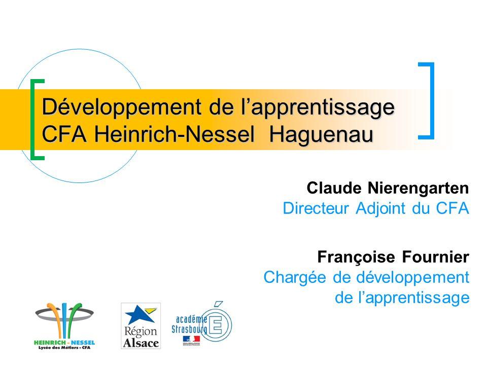 Développement de l'apprentissage CFA Heinrich-Nessel Haguenau