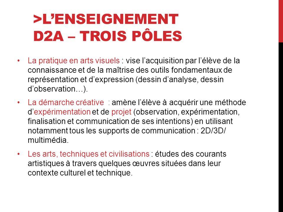 >L'ENSEIGNEMENT D2A – TROIS PÔLES