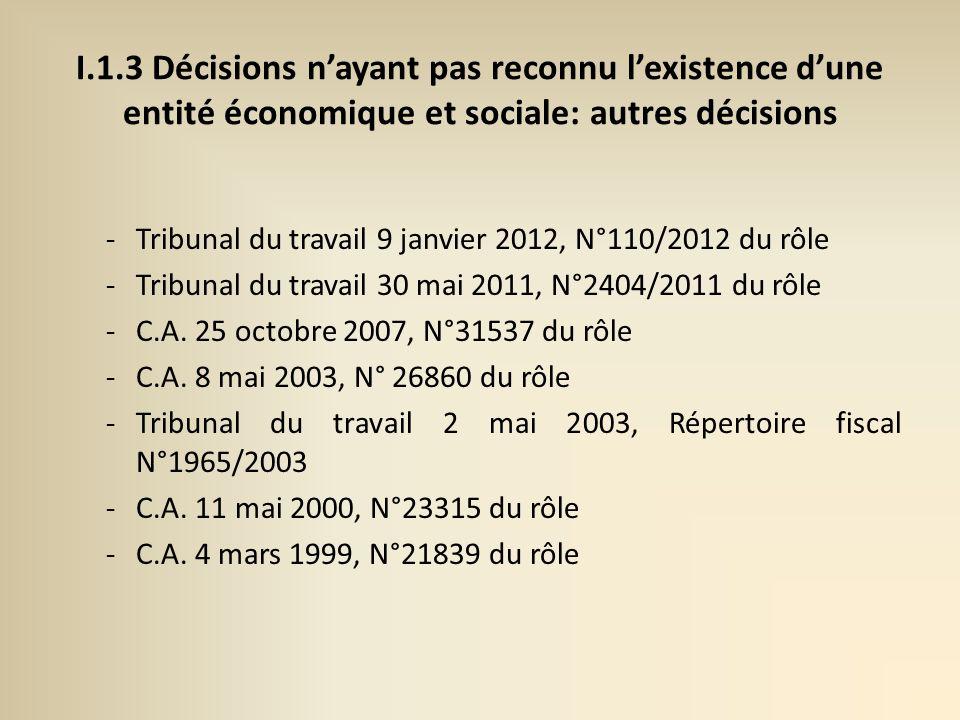 I.1.3 Décisions n'ayant pas reconnu l'existence d'une entité économique et sociale: autres décisions