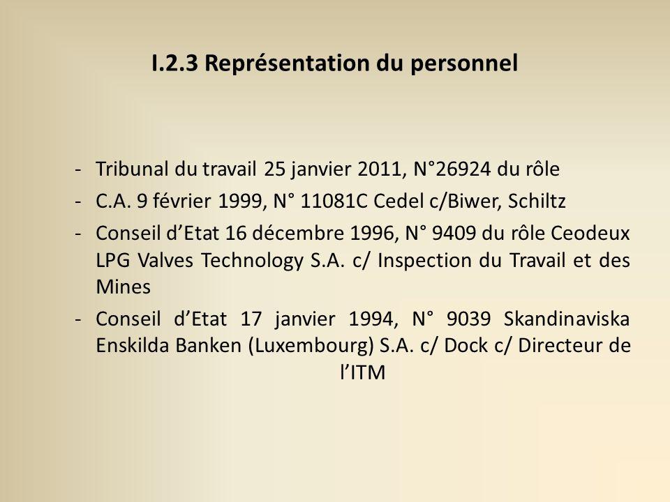I.2.3 Représentation du personnel