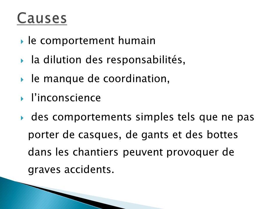 Causes le comportement humain la dilution des responsabilités,