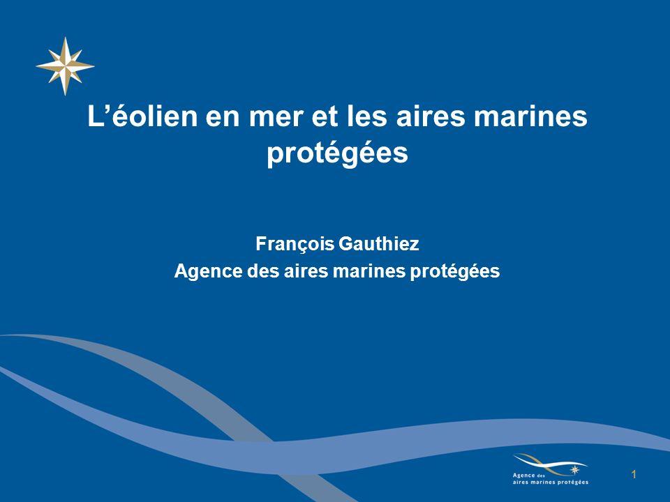 L'éolien en mer et les aires marines protégées