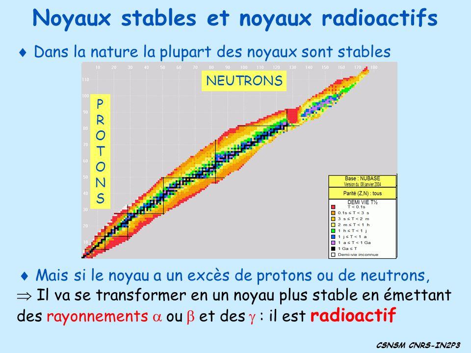 Noyaux stables et noyaux radioactifs