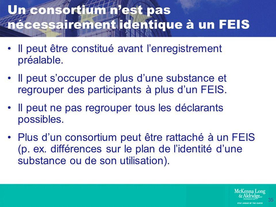 Un consortium n'est pas nécessairement identique à un FEIS