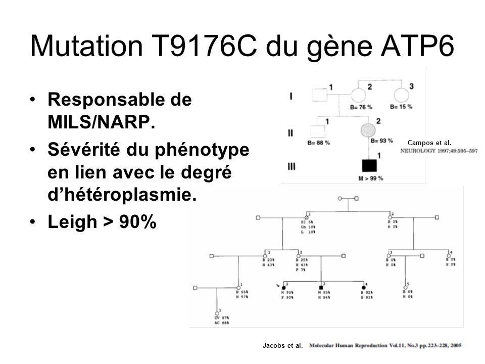 Mutation T9176C du gène ATP6 Responsable de MILS/NARP.