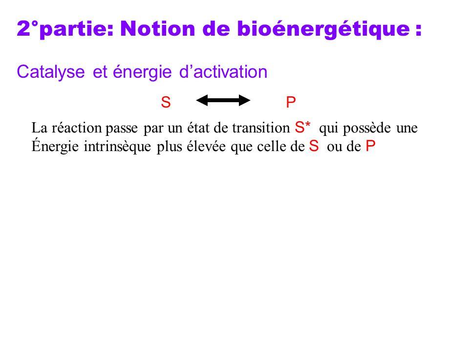 2°partie: Notion de bioénergétique : Catalyse et énergie d'activation