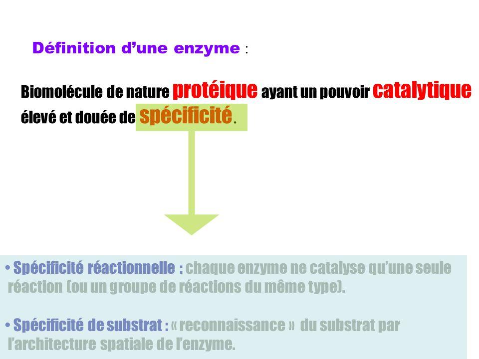 Définition d'une enzyme :