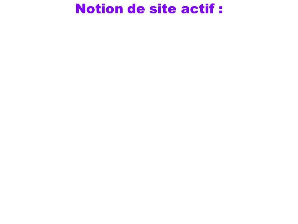 Notion de site actif :