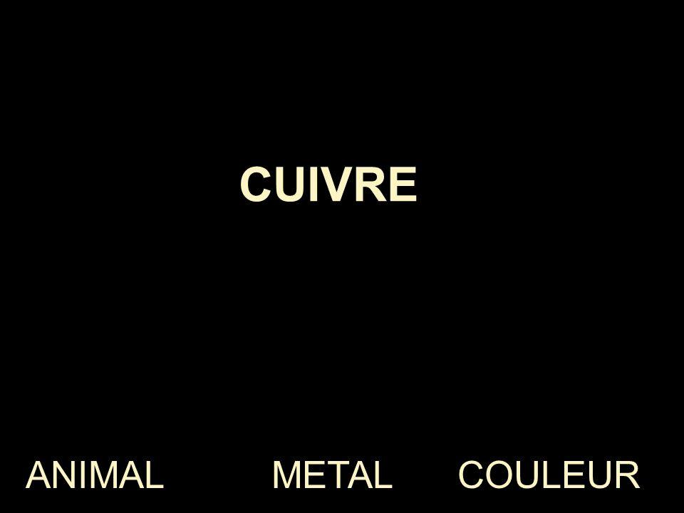 CUIVRE ANIMAL METAL COULEUR