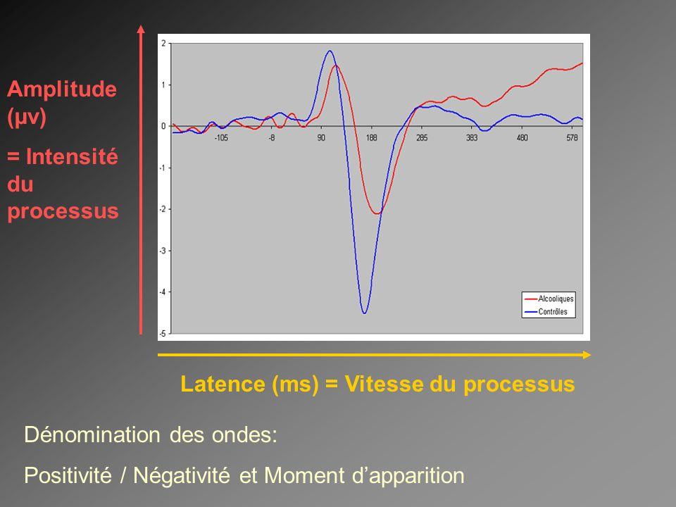 Amplitude (µv) = Intensité du processus. Latence (ms) = Vitesse du processus. Dénomination des ondes: