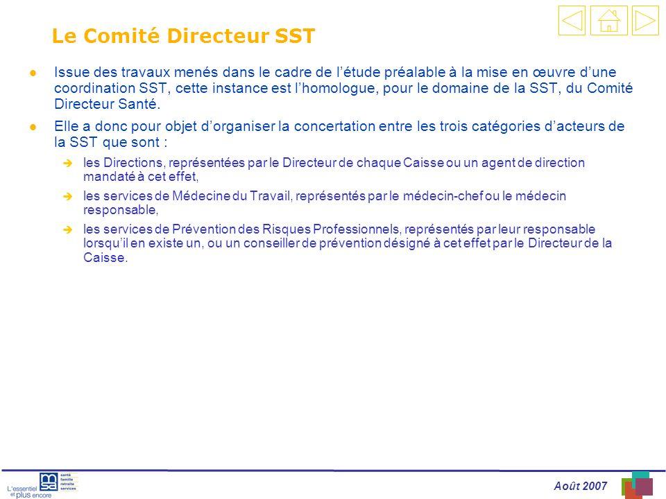 Le Comité Directeur SST