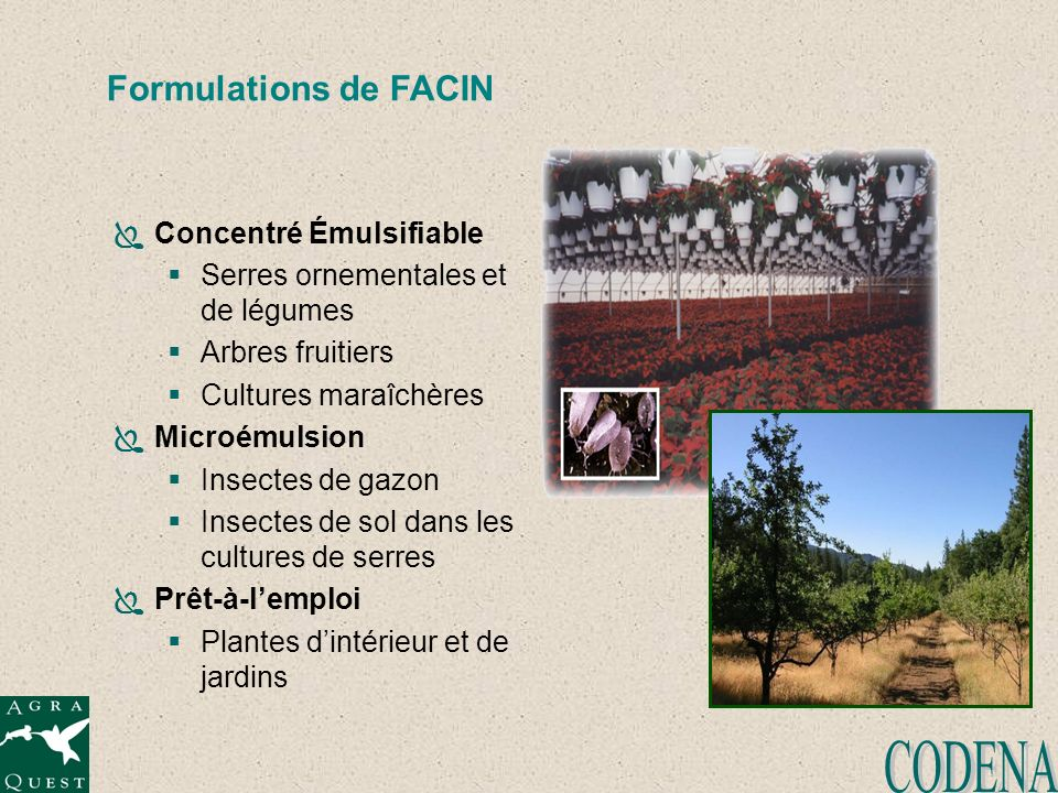 CODENA Formulations de FACIN Concentré Émulsifiable
