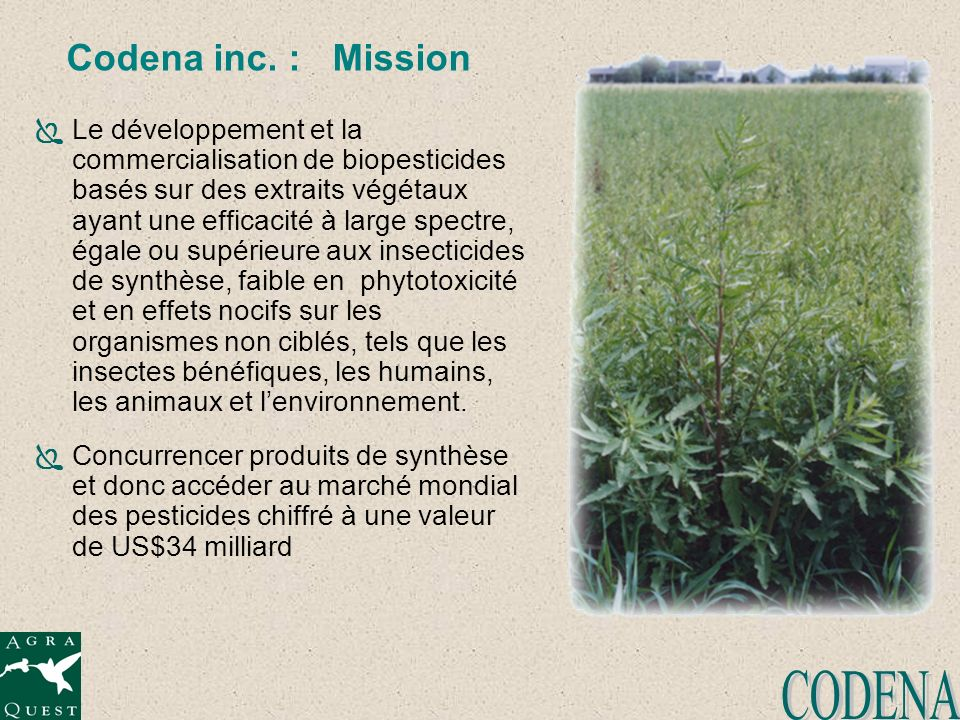 CODENA Codena inc. : Mission