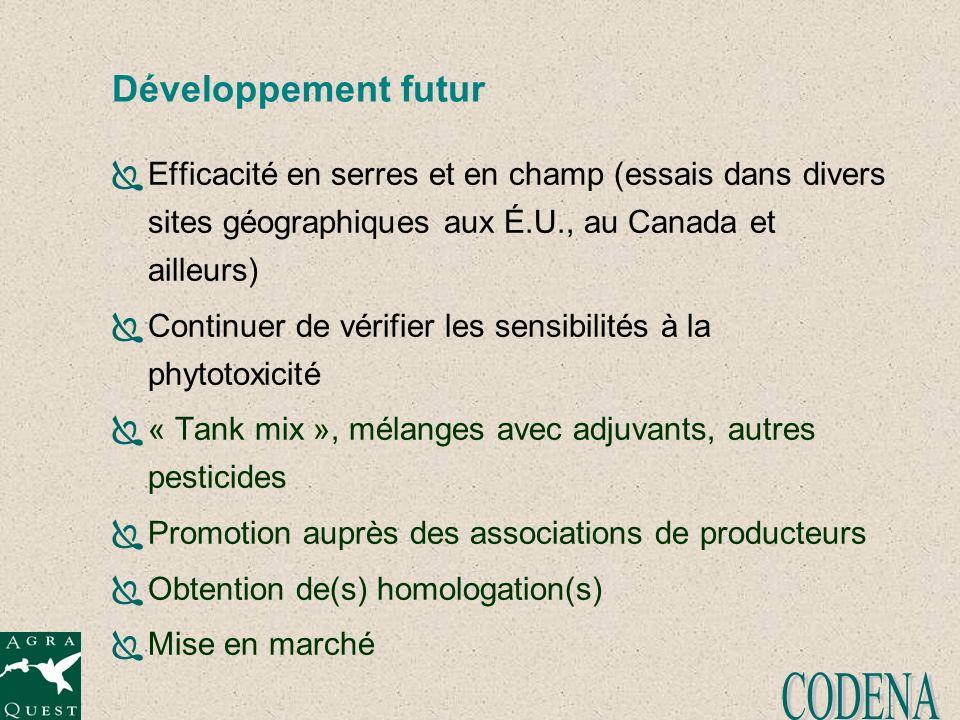 CODENA Développement futur