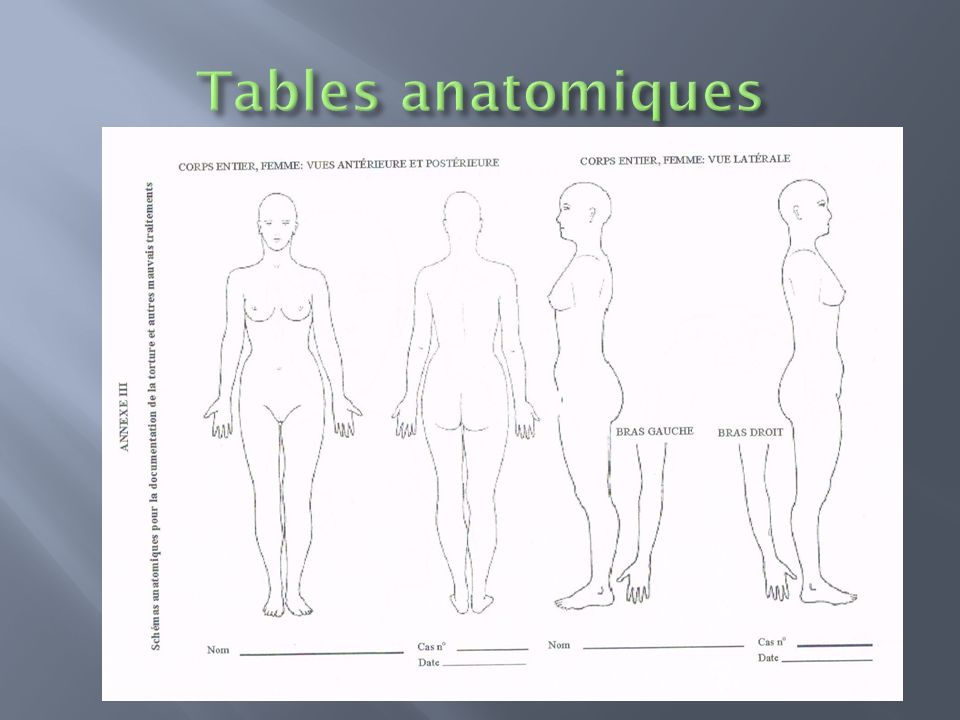Tables anatomiques