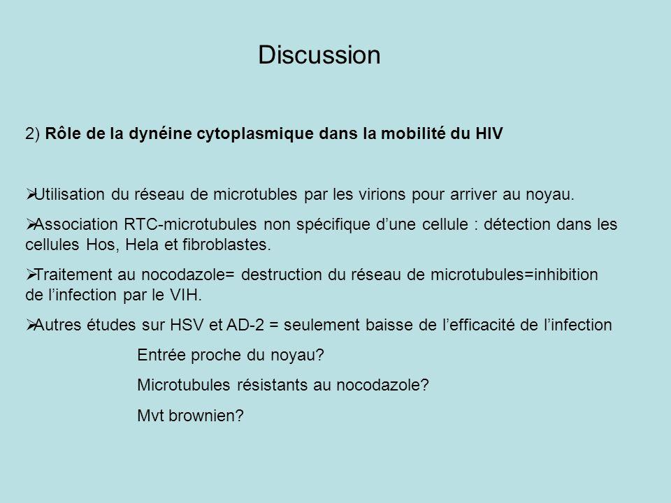 Discussion 2) Rôle de la dynéine cytoplasmique dans la mobilité du HIV