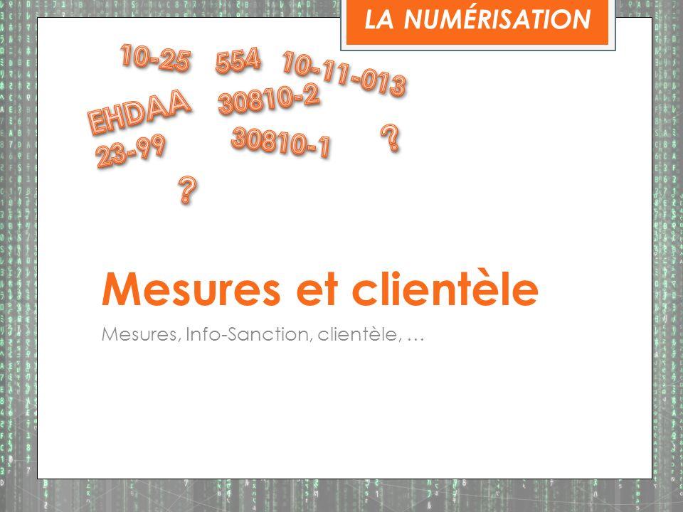 Mesures et clientèle EHDAA LA NUMÉRISATION 10-25 554 10-11-013