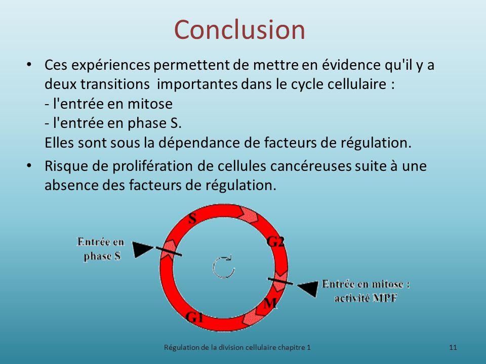 Cycle cellulaire- Régulation de la division cellulaire chapitre 1
