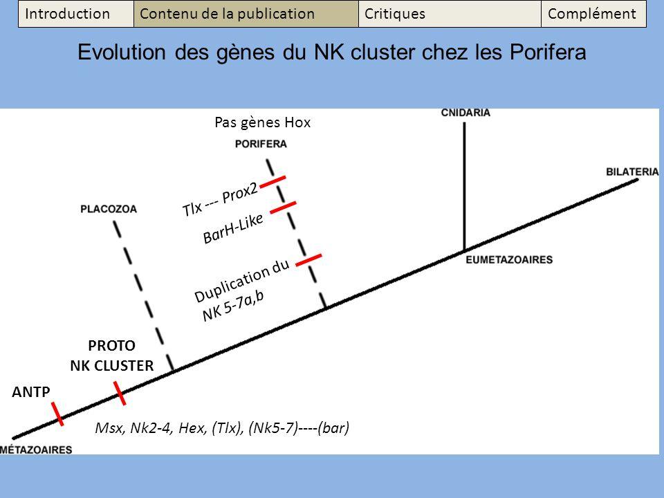 Evolution des gènes du NK cluster chez les Porifera