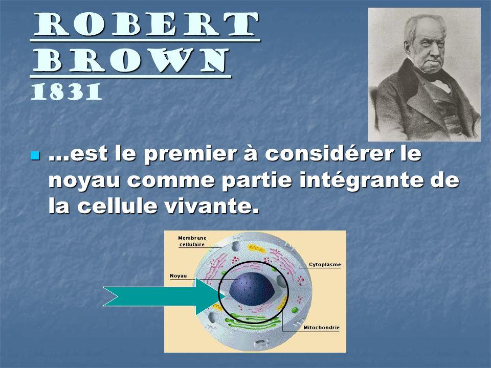 Robert Brown 1831 …est le premier à considérer le noyau comme partie intégrante de la cellule vivante.