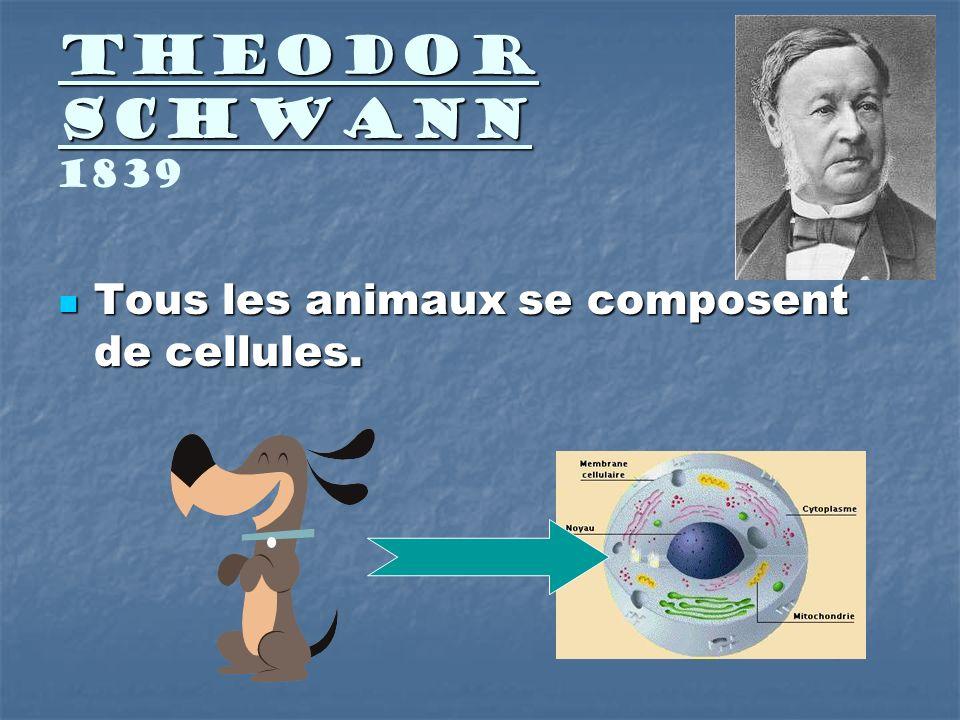 Theodor Schwann 1839 Tous les animaux se composent de cellules.