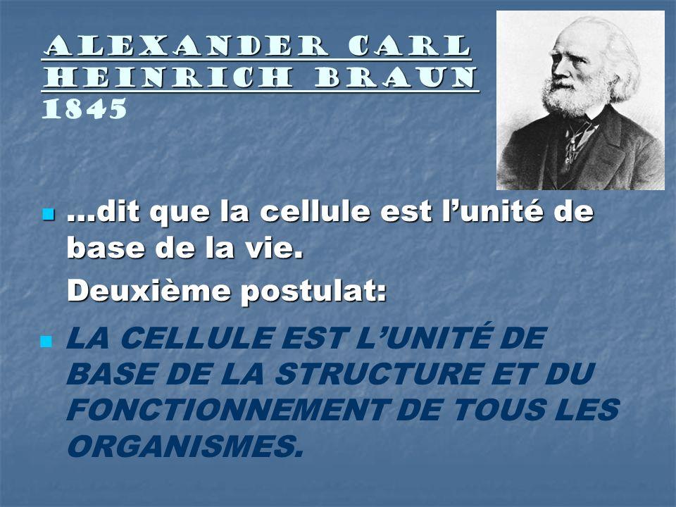 Alexander Carl Heinrich Braun 1845