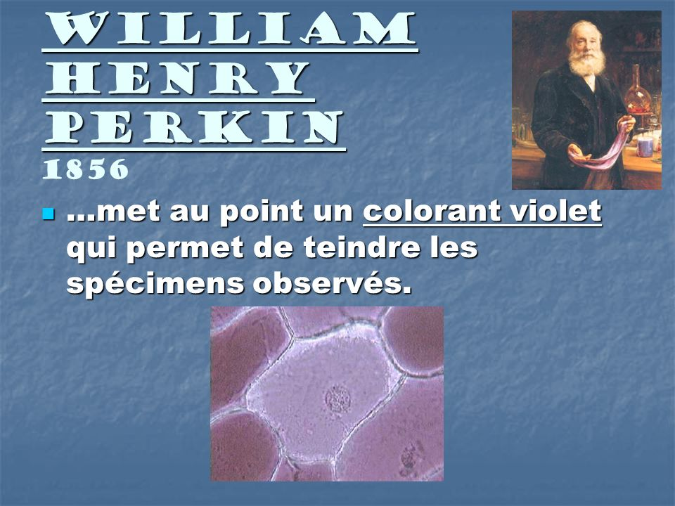 William Henry Perkin 1856 …met au point un colorant violet qui permet de teindre les spécimens observés.