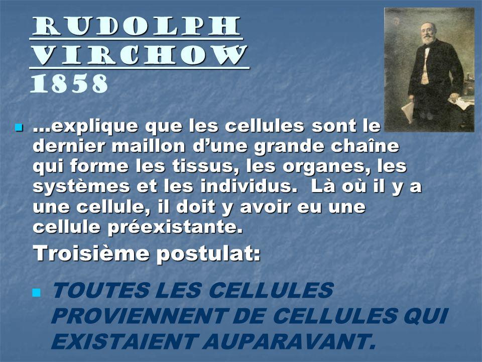 Rudolph Virchow 1858 Troisième postulat: