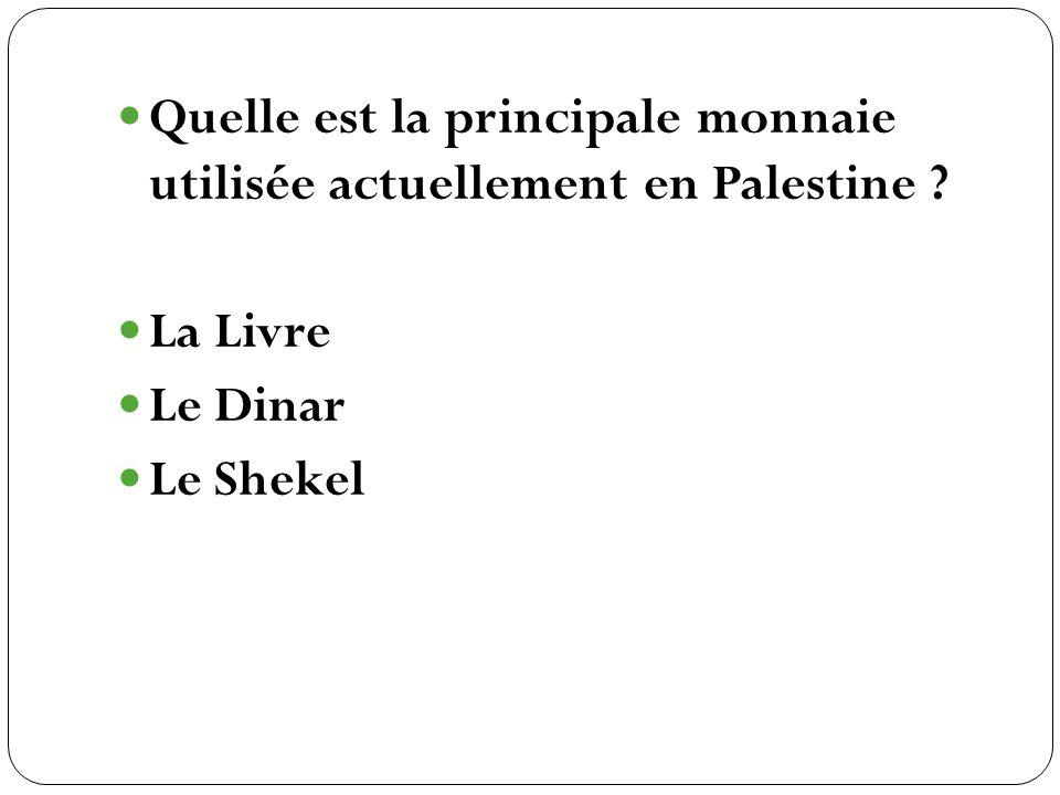Quelle est la principale monnaie utilisée actuellement en Palestine