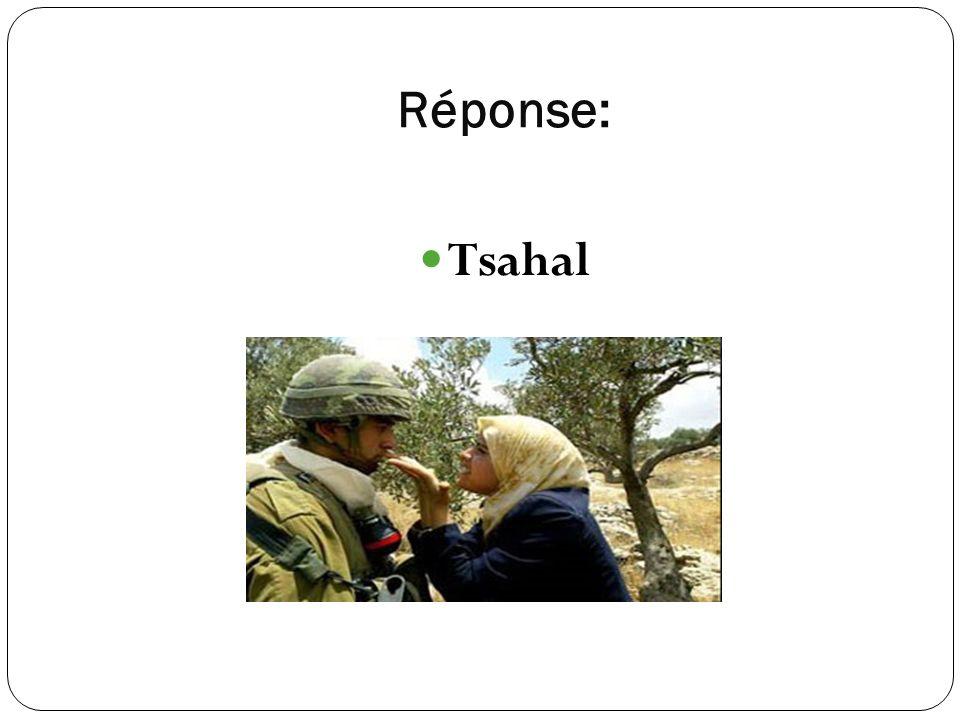 Réponse: Tsahal