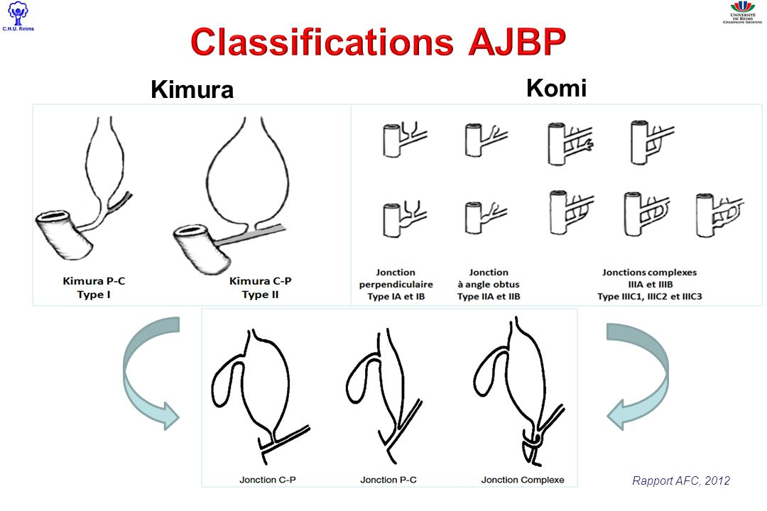 Classifications AJBP Kimura Komi Rapport AFC, 2012