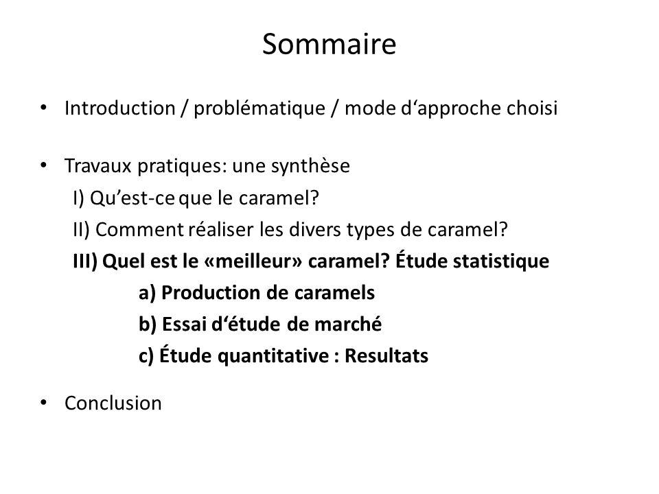 Sommaire Introduction / problématique / mode d'approche choisi