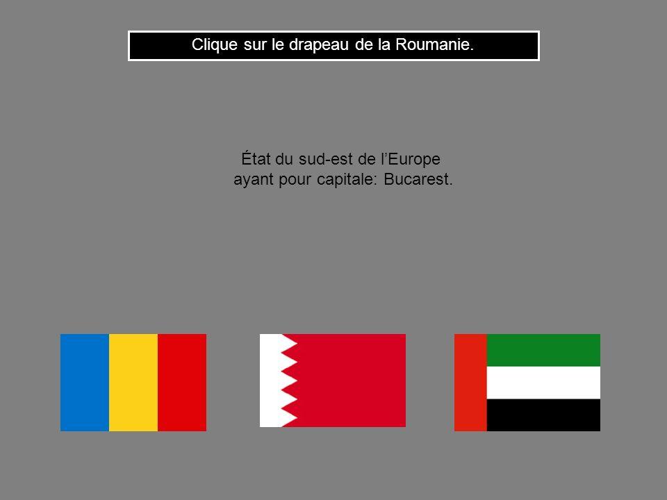 Clique sur le drapeau de la Roumanie.