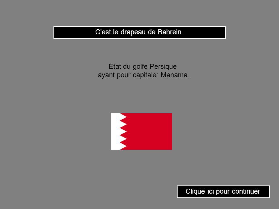 C'est le drapeau de Bahrein.